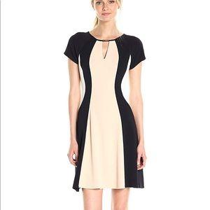 NWT Sandra Darren Color Block Cap Sleeve Dress